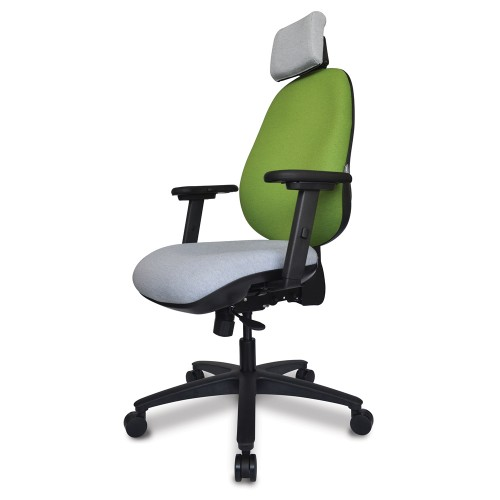 ERGOCUBE C6 ERGONOMIC TASK OFFICE CHAIR