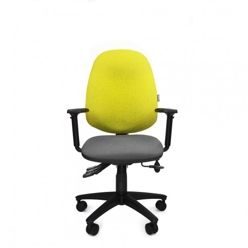 ERGOCUBE GOOD POSTURE 300 PETITE ERGONOMIC OFFICE CHAIR WITH HIGH BACK